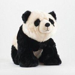 Giant Panda Cam - National Zoo