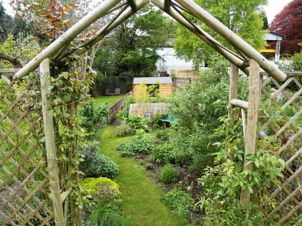 Garden Ideas Long Narrow 119 best garden: narrow images on pinterest | gardens, landscaping
