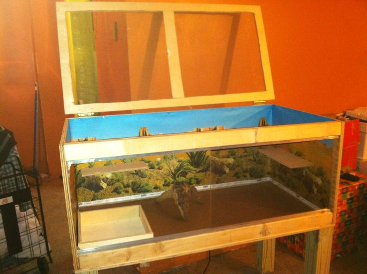 Open Top Reptile Enclosure Diy Homemade Custom