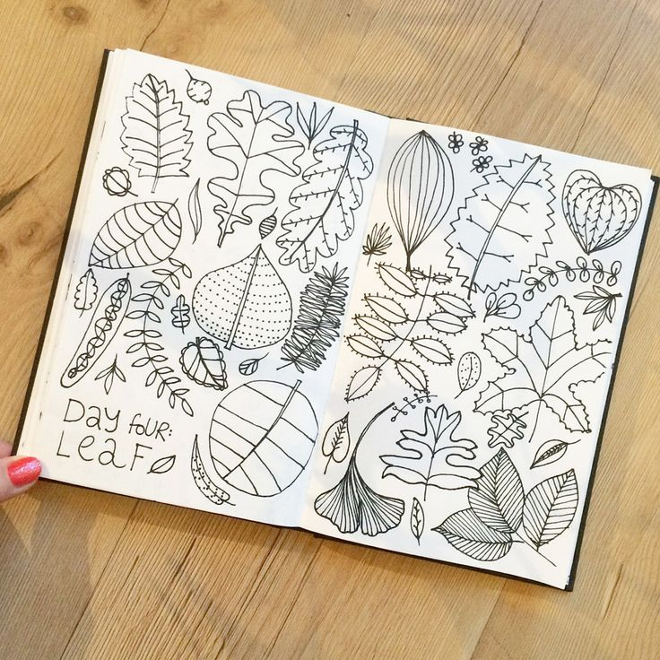 Klika Design: Creativebug Drawing Challenge with Lisa Congdon Day 4: leaf.