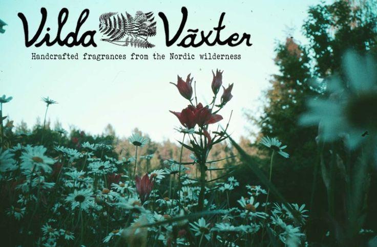 Vilda Växter´s first blog entry..