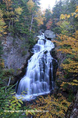 mountains waterfalls forest usa - photo #25