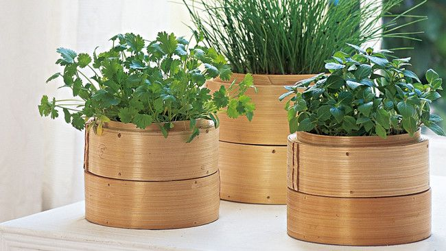 We love this DIY - Bamboo steamer herb garden! for a asian style bedroom