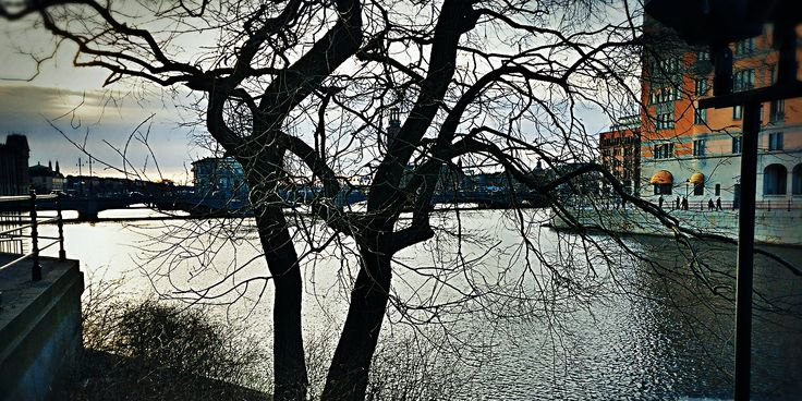 #nature #adventure  #pic #photo #photography #lake #amazing #nice #camera #beauty #love #art #memories #colorful #pure #trees #sky #clouds #oneplus3t #shotonOneplus 🏙️🌲🍁