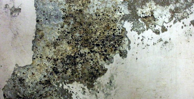 rough textures wall - Google Search