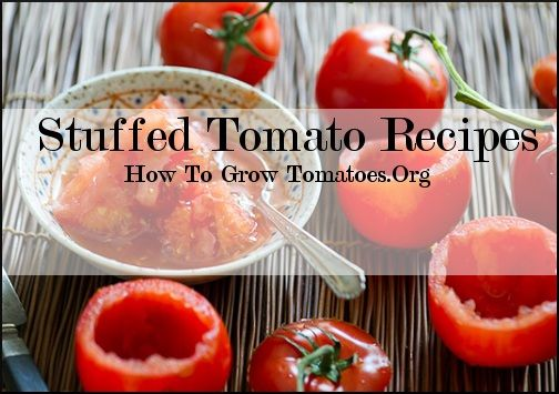 http://howtogrowtomatoes.org/simple-tomato-recipes/  Simple tomato stuffed recipes
