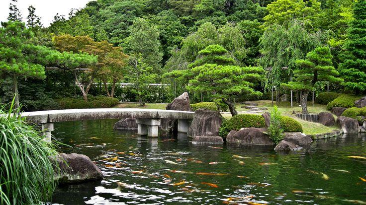 317 best images about koi pond on pinterest japanese koi for Japanese koi pool