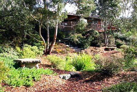 Australian Native Plants Society (Australia) - Photo Gallery