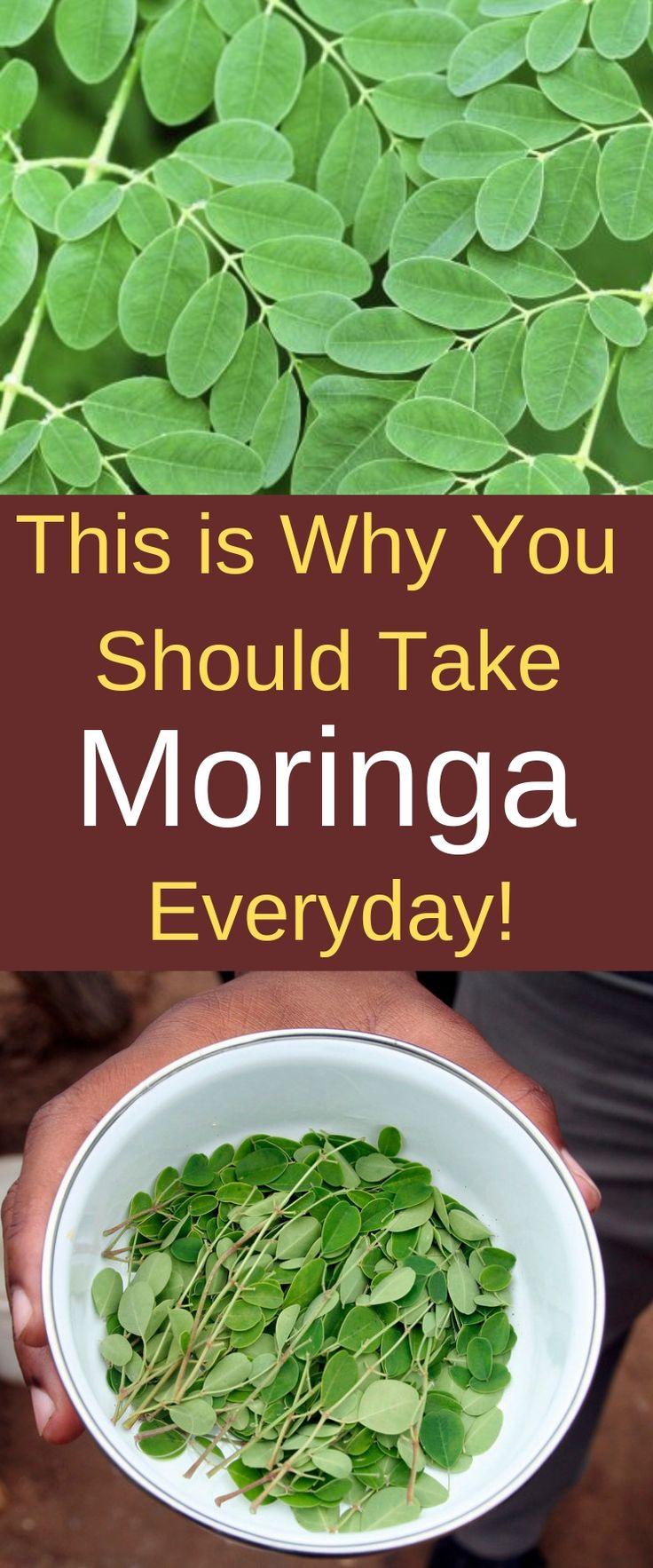 what is moringa good for, moringa seeds, moringa benefits