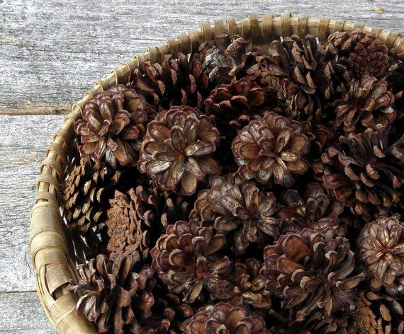 CRAFTING PINE CONES for Rustic Wedding and by TheRusticWoodshed, $10.00