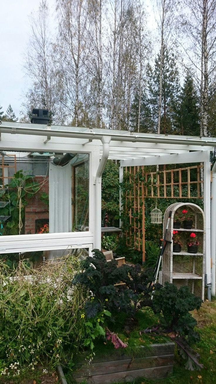 Greenhouse 💗