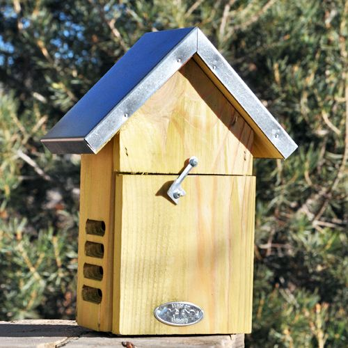 Ladybug House Plans Woodworking Projects Plans