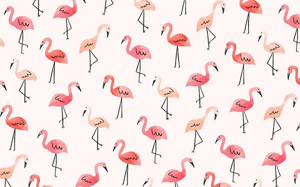 The cutest flamingo desktop wallpaper by Jen B. Peters for LaurenConrad.com