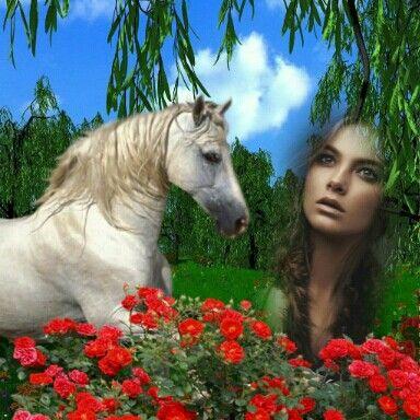 Půvab ženy a koně