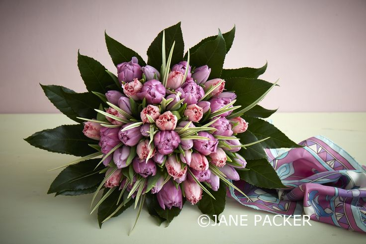 A girly take on our very popular Tulip only bouquet. Milan mixes together delectable peach and purple tones of the nation's favourite spring bloom with spikey, grassy greenery interspersed and a coating of Aralia leaves.