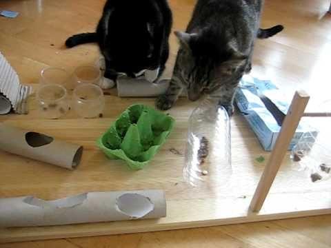 Fummelbrett für Katzen selbstgebastelt