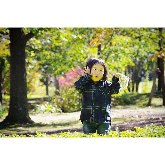 【ayarinann】さんのInstagramをピンしています。 《2016.October 十勝trip ・ #六花の森 ・ 坂本直行さんの絵画そのままの森。 春は水芭蕉が。 夏はハマナスが。 秋は柏が。 ・ 娘は走り回り「トトロがいた✨」と連呼。 緑の庭園はお日様がキラキラで、 反射して顔まで緑色になっていた。 ・ #旅#旅の記録#十勝#十勝旅行#家族旅行#子連れでおでかけ#中札内#六花の森#六花亭#庭園美術館#美術館#花#庭園#森#坂本直行#大自然#娘2歳#杏》