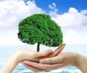 Számunkra fontos a környezetvédelem és nyitottak vagyunk a megújuló energiaforrások felé.  http://milleralarm.hu/szolgaltatasok/kamera-rendszerek/