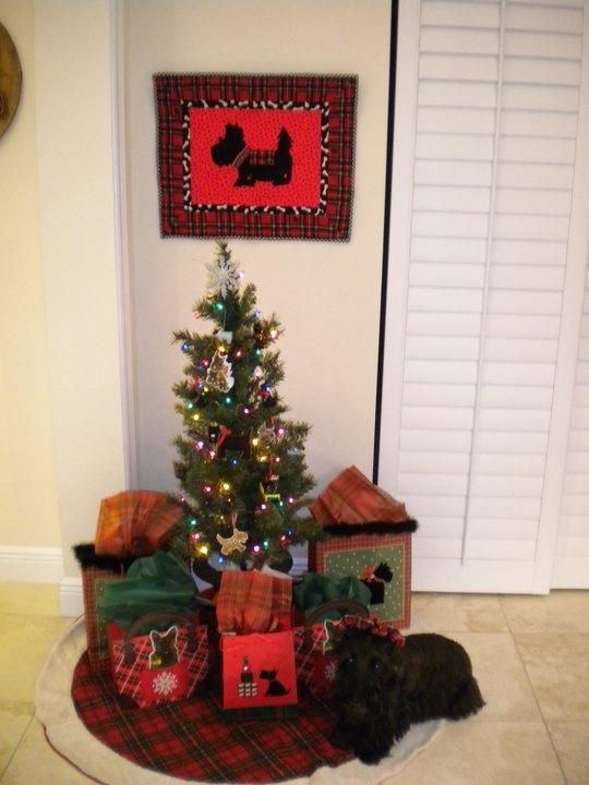 Kayleigh and her tree, with all scottie ornaments