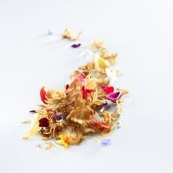 Flowers, Flowers, Flowers recipe from Mugaritz: Heads, Chef Adoni, Flowers Recipe, Adoni Luis