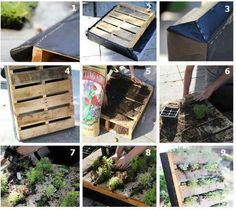make your own pallet garden ... just make sure the wood is not treated