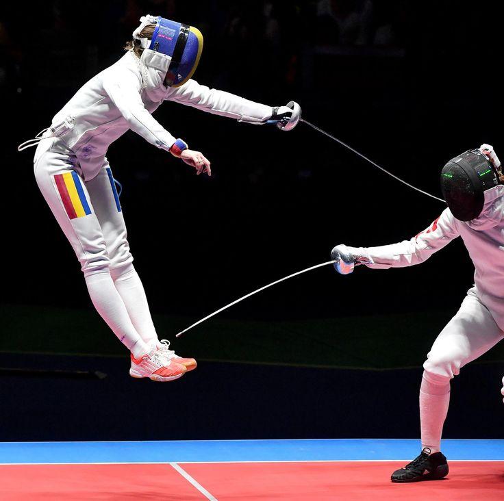 379 Best Fencing Images On Pinterest Fencing Trellis
