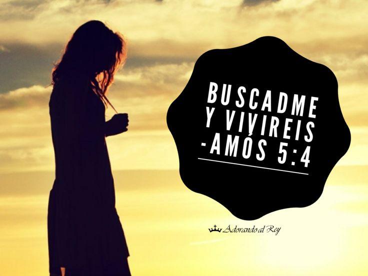 Pero así dice Jehová a la casa de Israel: Buscadme, y viviréis; (Amós 5:4) #CitasBiblicas #Biblia #PalabraDeDios #Versiculo #Amos #Avivamiento #Amen #Cristianismo #AdorandoalRey #✝