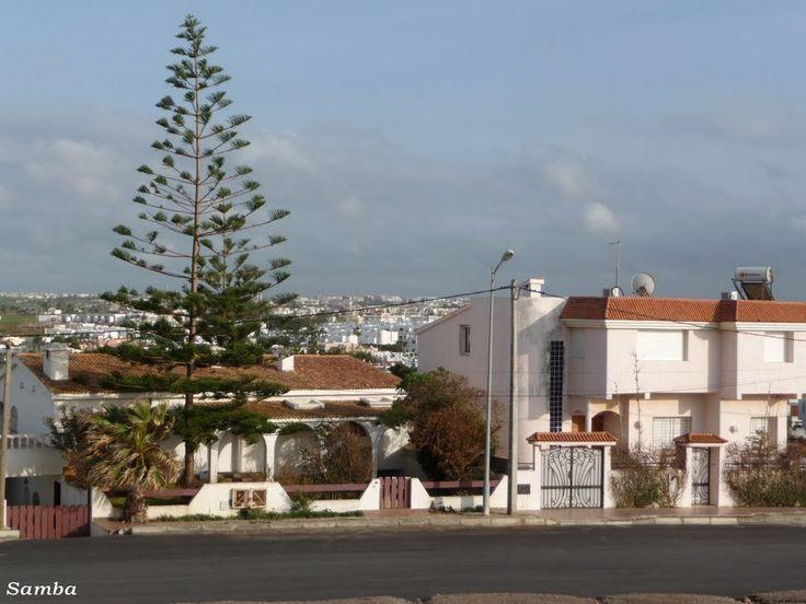 Harhoura, Sidi El Abed 2 - Samba 2011