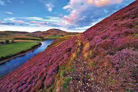 Výsledek obrázku pro Skotská vysočina