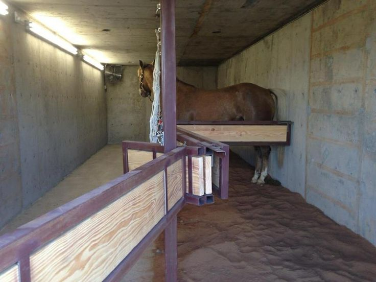 Storm Shelter For The Horses Future Farm Pinterest