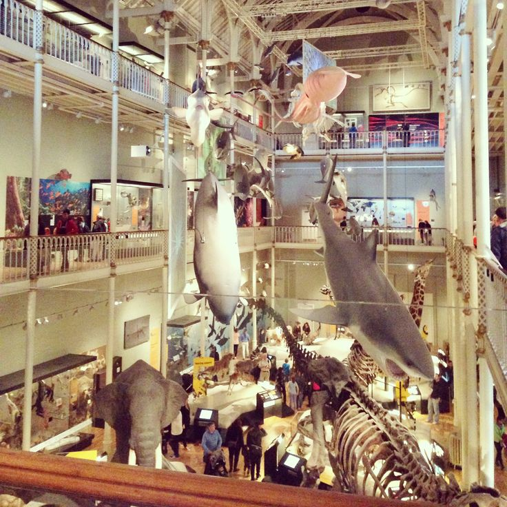 Fab day to the National museum of Scotland. I could not recommend this place any more. Its such a good place for little ones, with lots of interactive activities.