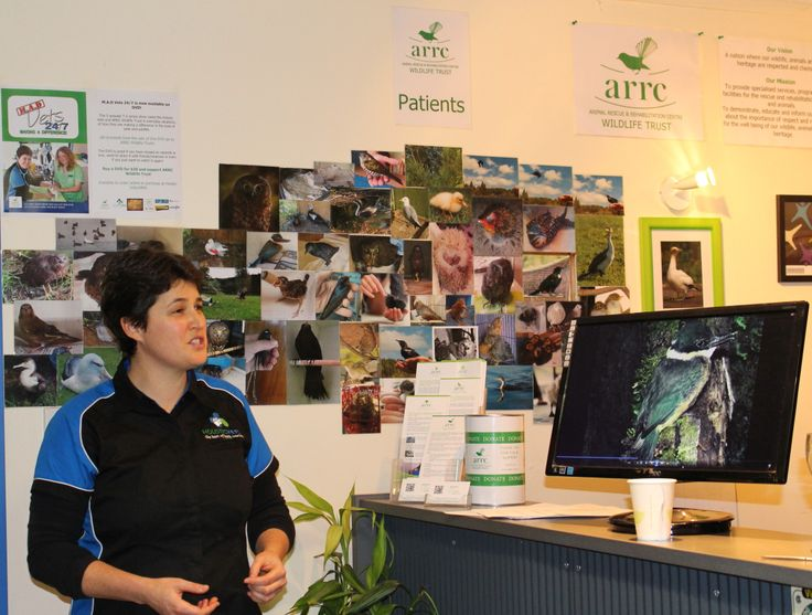 A few photo's from Green Drinks that we and Holistic Vets hosted. Everyone had some drinks and nibbles and got a tour of the clinic with some background info about everything.