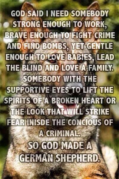 So God Made a German Shepherd