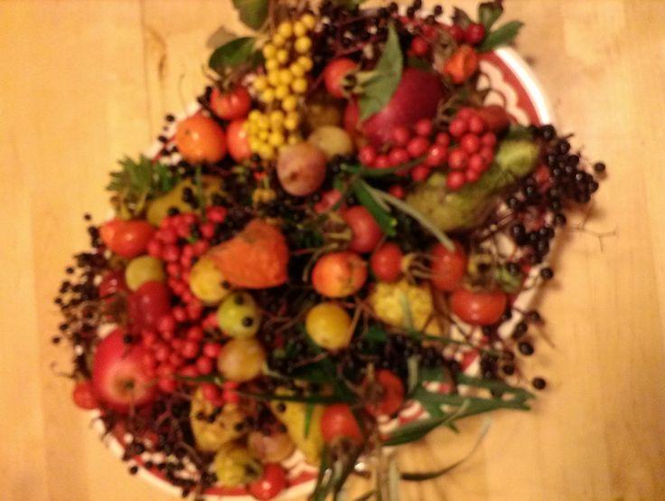 een schaal met eetbare vruchten uit het wild, lekker om een jam van te maken.