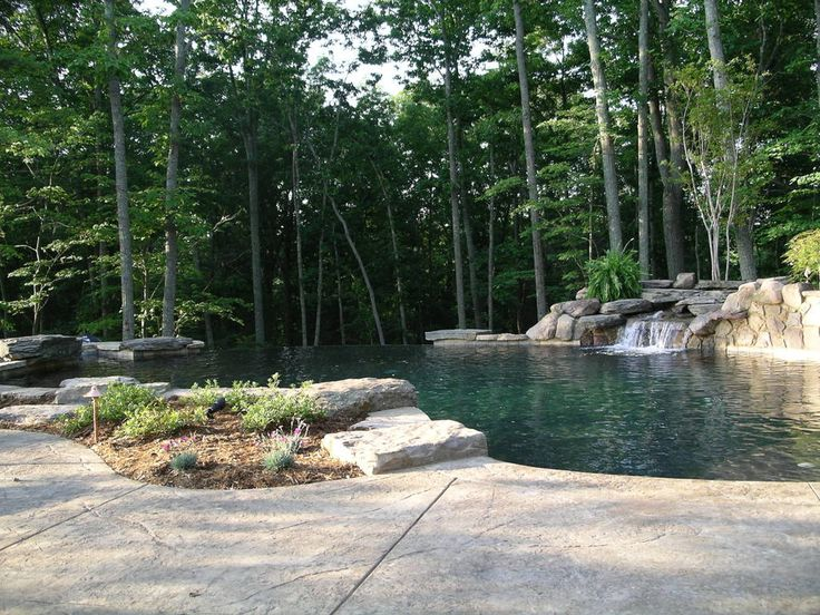 Raleigh cary chapel hill landscape design swimming pool for Koi pond pool