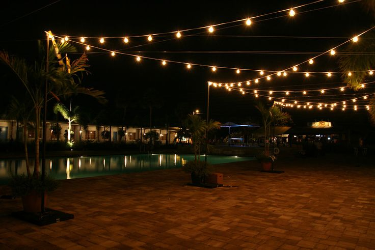 ... Lights: Wedding, Christmas, & Corporate Event Lighting Services in