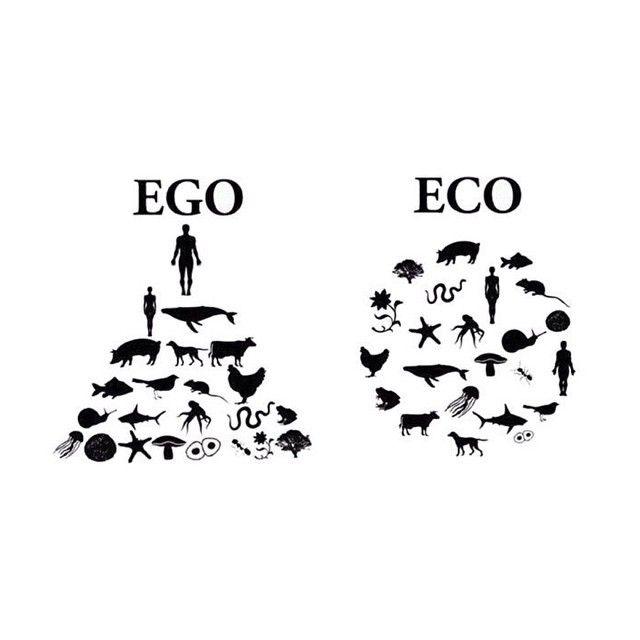 Não leva nada de um humano para ser gentil com um animal. Seja gentil com todas as criaturas, é uma verdadeira religião.
