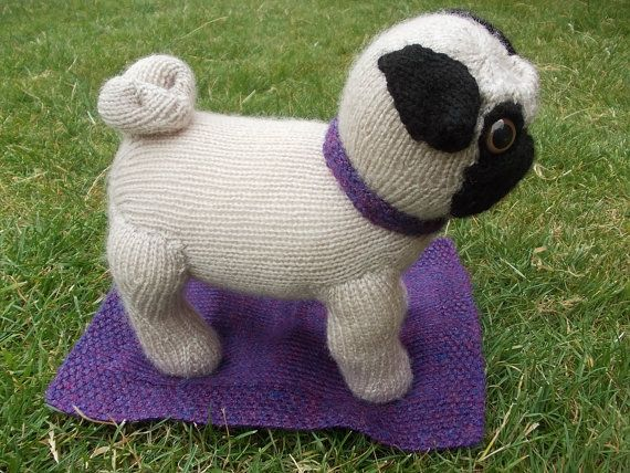 Knitting Pattern Dog Coat Pug : Fawn Knitted Pug with Purple Collar and Blanket Pug, Collars and Purple