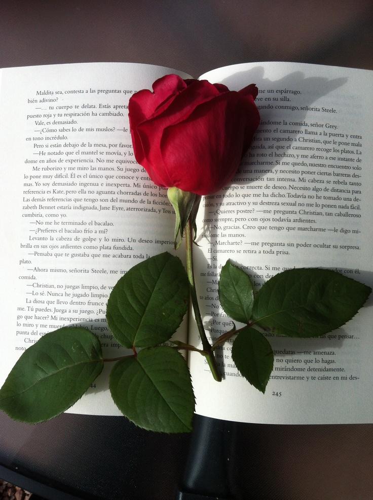 Rosa y lectura