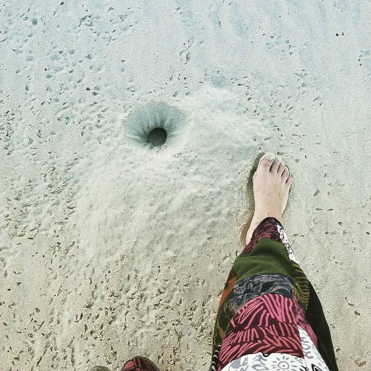 Crab holes.. This big!  #footforscale  . . These are all up the east end of the beach. Glad I didn't fall in... I may have never gotten out  . . #sandy #hole #crab #next #picture #thursday #walkingaround #walking #allofasudden #hole #everywhere #dontfallin #trap #claws #littledude #versus #bigdude #sore #toes #snip #snap #shootandshare #blogger #bloggers #adventure #healthy #keepfit