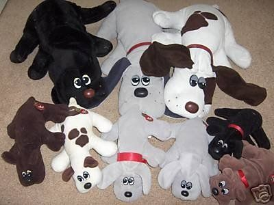 Pound Puppies.  I'll never forgot these because on year I asked for a dog for Christmas and I was given one of these.  His name was Spot :)