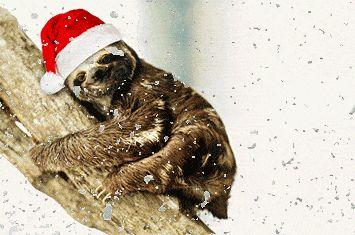 Zootopia Sloth Flash Funny Gif #7621 - Funny Sloth Gifs| Funny Gifs| Sloth Gifs