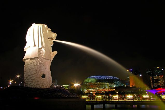 If you are planning to take your family for a vacation to Singapore, then it is essential that you purchase a pre-designed tour package from a renowned travel agency, for thehassle-free travel experience. In this article some tips and guidelines, to be followed while purchasing a Singapore tour package have been discussed.