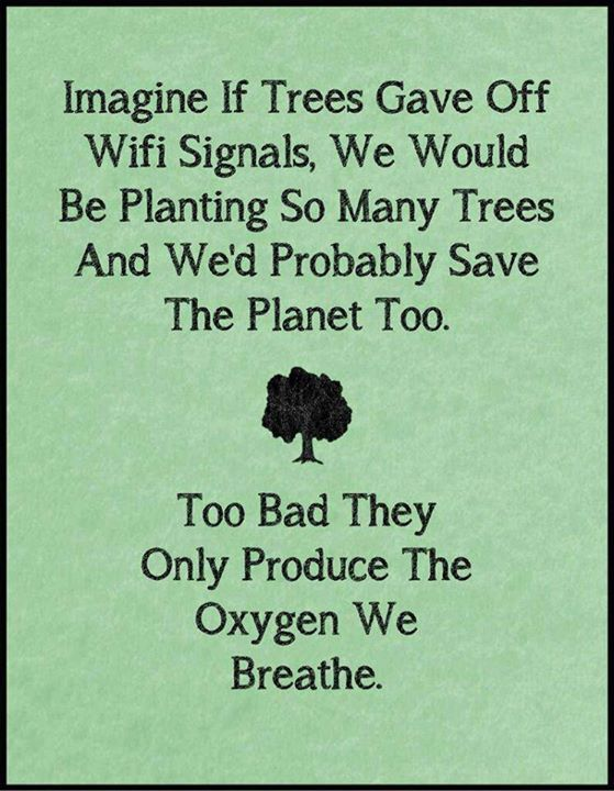 This is so true, but I'm not sure if it's just a sign of the times, or if it's just a sign of our utter apathy to protecting things that are imperative to our being.  To learn about the biggest trees on Earth, check out our article: http://www.fromquarkstoquasars.com/the-biggest-trees-on-earth/  Image Source: http://themetapicture.com/if-trees-gave-off-wifi/