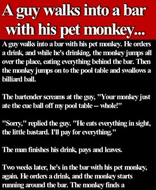 The 10+ Best Monkey Bars Jokes - ↑UPJOKE↑