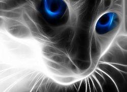 Kot, Sierść, Niebieskie, Oczy, 3D