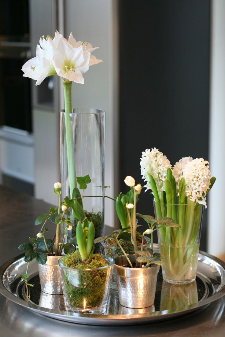TRAYS & PLANTS :: Bulbs & votives w/ little plants.