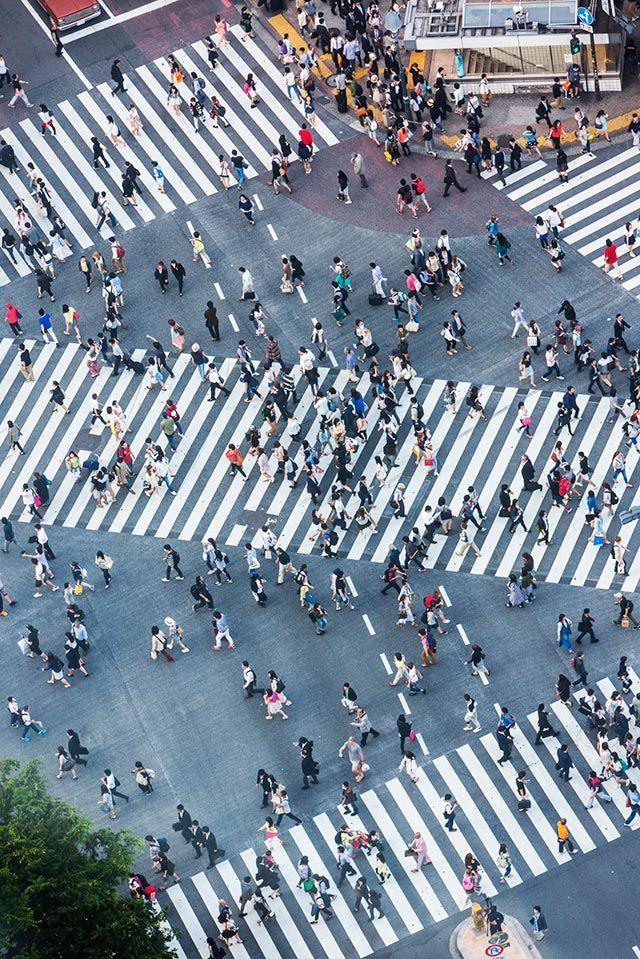 Shibuya Crossing by davidf via A Beginner's Guide To Tokyo - gothamist