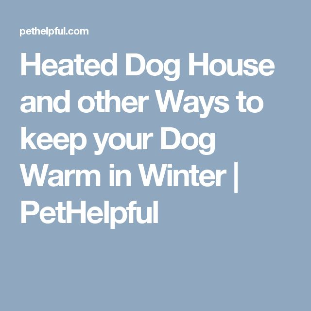 Best 25 heated dog house ideas on pinterest amazing dog for The best way to heat your house