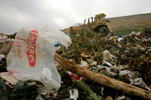 Los Angeles OKs Ban on Plastic Shopping Bags